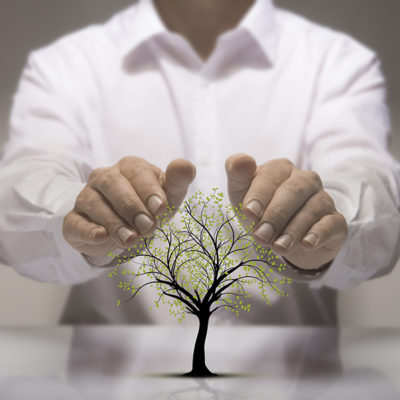 Man wearing white dress shirt holding two hands above a tree signifying environmental protection.